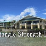 Triangle Strength LTD