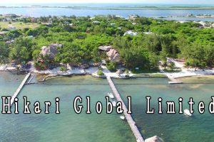 Hikari Global Limited