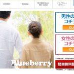 Blueberrry/ブルーベリー