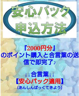 『2000円分』のポイント購入と合言葉の送信で即完了♪↓↓合言葉↓↓【安心パック適用】