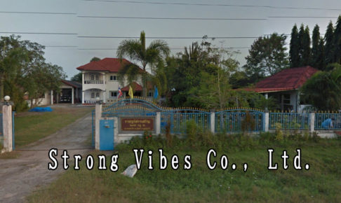 Strong Vibes Co., Ltd.