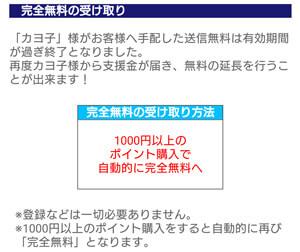 1000円以上のポイント購入で自動的に完全無料へ