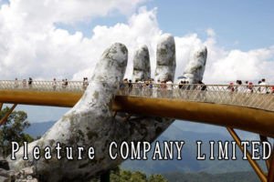 Pleature COMPANY LIMITED