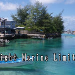Bright Marine Limited