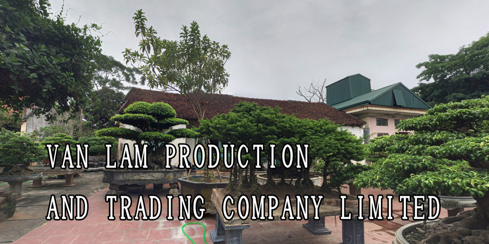 VAN LAM PRODUCTION AND TRADING COMPANY LIMITED